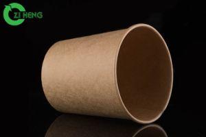 Kop van Kraftpapier PLA van het Drinkwater van de Koffie van de Thee van het Document van de douane de Beschikbare Hete met het Deksel van het Document