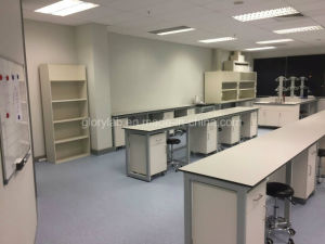 ニュージーランドの顧客(JH-WF032)のための木製および鋼鉄実験室の家具