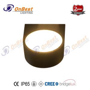 Hot Price IP65 14W luz LED para iluminación de pared