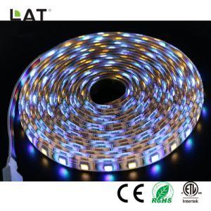 Il lavoro flessibile astuto dell'indicatore luminoso di striscia di DC24V 3m IP20 WiFi SMD 5050 Rgbww 30/60/120LEDs LED con l'eco permette alla voce di Alexa