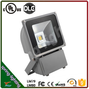 LED de Schijnwerper van uitstekende kwaliteit 80W Waterproof met Ce, RoHS, UL Approved