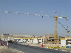 Hsjj Ce SGS la fabricación de grúas torre hidráulica