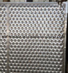 La plaque d'immersion de la plaque de chauffage de piscine oreiller la plaque de cavité de la plaque