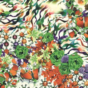 직물에 의하여 길쌈되는 직물 (TLD-0086)를 인쇄하는 중국 아름다운 디지털