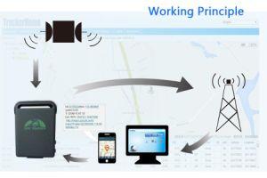 Inseguitore personale GPS della mini del Portable di GPS automobile dell'inseguitore Tk102b con la scheda di SIM
