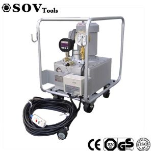 300 MPa de Ultra Elektrische Hydraulische Pomp van de Hoge druk die met Hydraulische Cilinders Sov Dcb 300 wordt aangepast