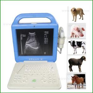 Hospital Veterinário laptop portátil máquina de scanner de ultra-som FM-9003L