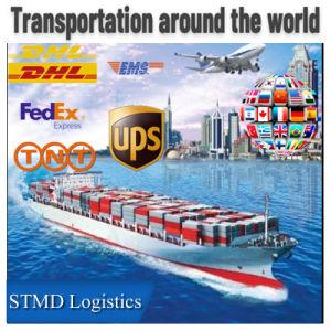 Professional Air Freight Forwarder ferroviaria Transporte marítimo Express Envío de agentes en todo el mundo
