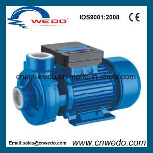 1.5dkm-16 국내 원심 수도 펌프 (0.75KW/1HP)