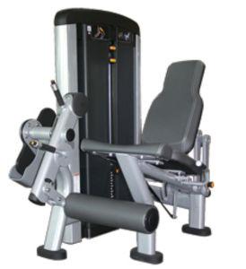 新製品のハンマーの強さ装置の足の拡張Xh905
