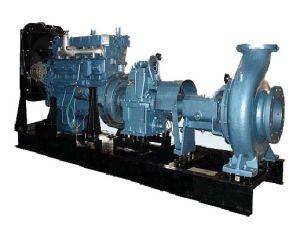 Triebwerk-betätigt Bewässerung-Wasser-Pumpen-Dieselsets