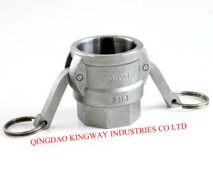 Accoppiamenti rapidi dell'acciaio inossidabile di tipo D