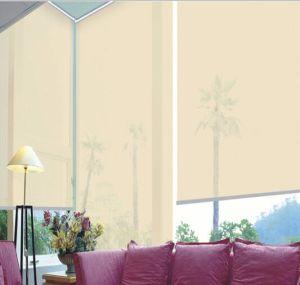 Persianas de rodillo de la protección solar para el apagón Windows