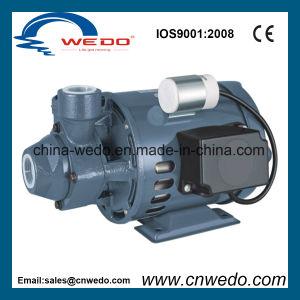 Pm-16 Cortex Nettoyer la pompe à eau électrique de la pompe de surface (0,37 KW/0.5HP)