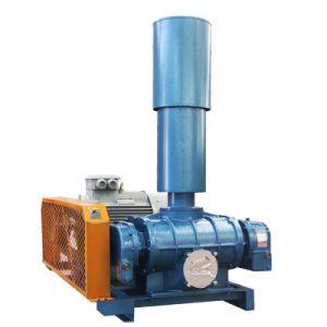 Bulk Solids Handling Pneumatic Conveying Roots Blowerand Pump Vacuum