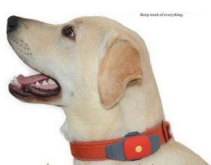 DogおよびCatのためのCollarのGPS Pet Tracker