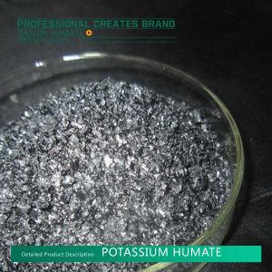 De In water oplosbare Meststof van het Humusachtige Zuur x-Humate