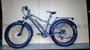 250W 500W 뚱뚱한 타이어 바닷가 산 전기 자전거