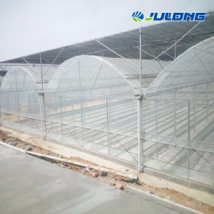 Túnel de la agricultura Multi Span Plástico tipo Holland la construcción de invernaderos hidropónicos