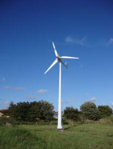 Ane 10kw Safety Pitch Controlled weg von Grid Type Wind Turbine Generator