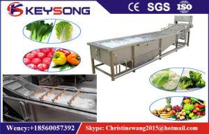 Frutas e Produtos Hortícolas Automática Industrial Arruela de alimentar a máquina de limpeza e lavagem