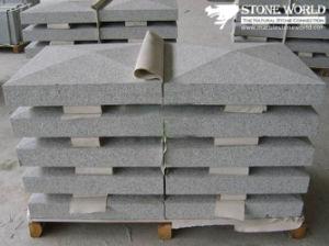 Panneau de granit gris pour l'extérieur des murs (CS089)