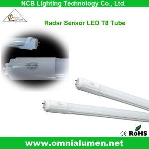 Salvajemente utiliza LED T8 Sensor de radar del tubo (OLT80914W-M)