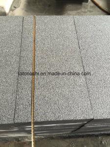 Padangの屋外のペーバーのための灰色G654花こう岩のタイル