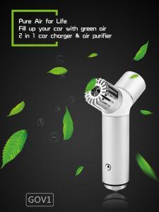 Зеленый Kingspec нового воздуха