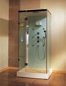 Sala de ducha de vapor (CT9190)