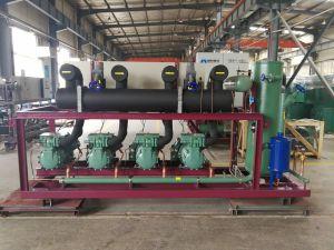 /Water raffreddato aria ha raffreddato l'unità del compressore di Bizter per alimento congelato