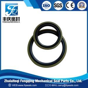Gsf PTFE Glyd Ring/Spgo und NBR/Viton O-Ring