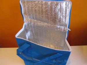 Sac de glace de pique-nique non tissé pour les aliments surgelés (hbcoo-35)