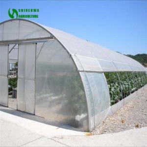 熱い販売のコショウのための極度のたがのトンネルの温室