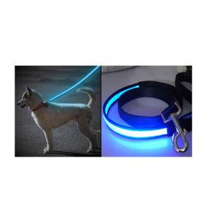 hoog zicht die leiband van de leidene hond van de verlichting de nylon opvlammen