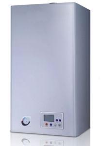 Foshan Smales estándar Gas-Fired Ce calentador de agua de caldera (GEM36-BV6) exportados a Irán, Ucrania.
