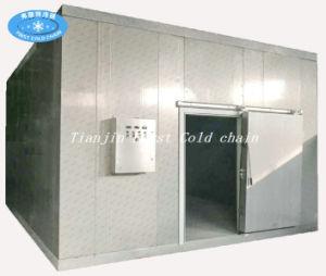 Melhor qualidade de fábrica sala fria para armazenamento de vegetais e frutos congelados de frango de carne de bovino