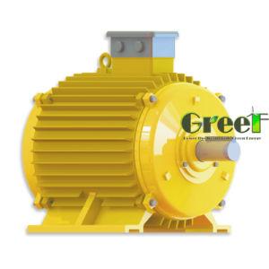 generatore a magnete permanente di 1-10kw Coreless