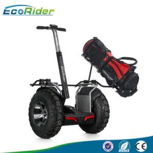 weg vom Straßen-Roller für Verkaufelektrischen stehenden Chariot E-Roller