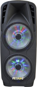 LED 80W High Power F73D를 가진 2X10inches Bass Professional Stage Speaker