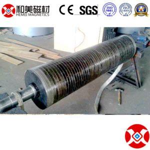 10 van de Fabriek de van de Permanente jaar Rol van de Zeldzame aarde Magnetische/Separator van de Katrol