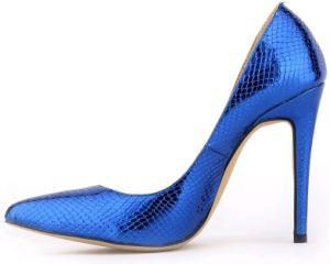 Neue Schuhe der Ankunfts-Form-Absatz-Dame-Kleid
