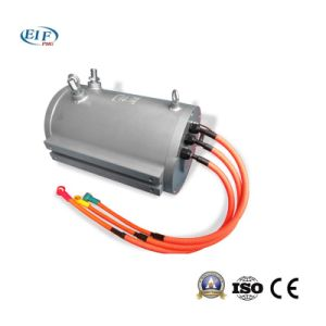 Elektrischer Fahrzeug-Gebrauch-Hochgeschwindigkeitsmotor 30kw3000rpm237VAC