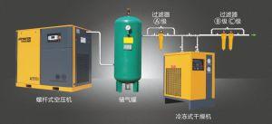 専門の製造業者ねじ空気圧縮機(4KW-75KW)
