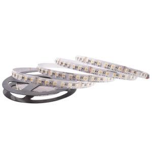 Fábrica OEM 5050SMD LEDs RGBW 72/M DE TIRA DE LEDS Luces