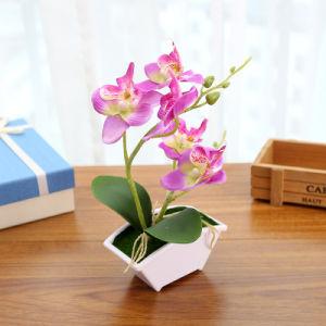 Творческие семьи подарок искусственные цветы Искусственные растения сад оформление