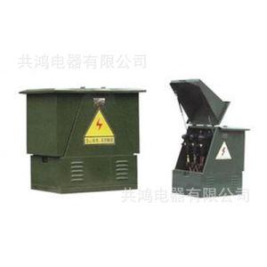 고전압 케이블 배급 상자 케이블 분지 상자