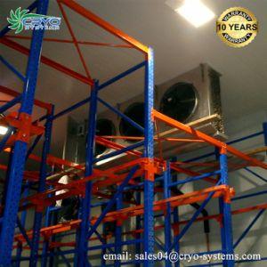 Quarto frio Water-Cooler Evaporador fabricantes do condensador do condensador