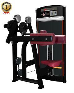 Aumento laterale messo strumentazione di forma fisica per ginnastica commerciale dell'interno