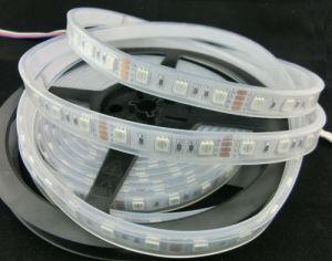 Cool white 60LED SMD5050 24 voltios de Iluminación de tira flexible de LED